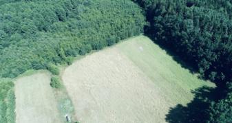 Кормові поля у лісі з висоти