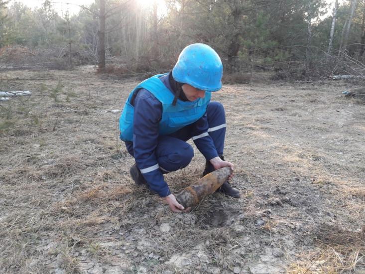 В лісосмузі на Волині знайшли боєприпаси минулої війни