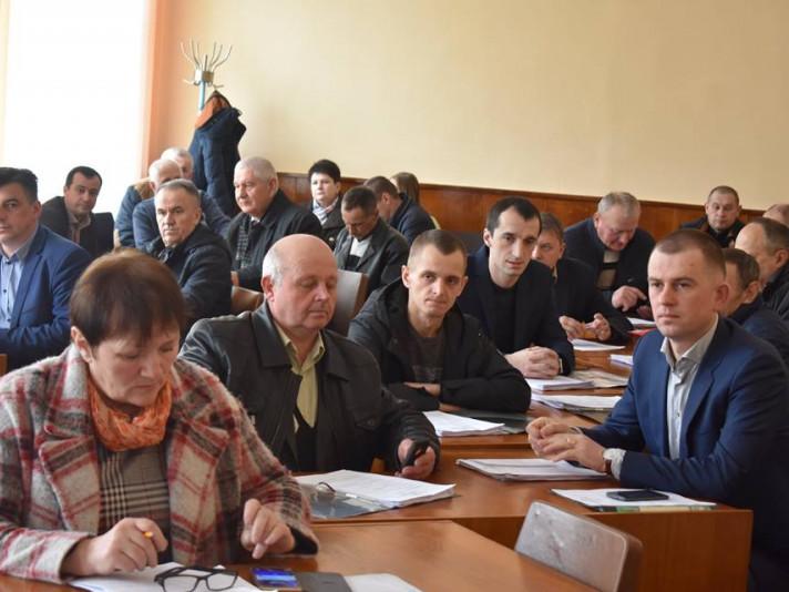 Депутатський корпус Володимир-Волинської райради поповнився новими депутатами