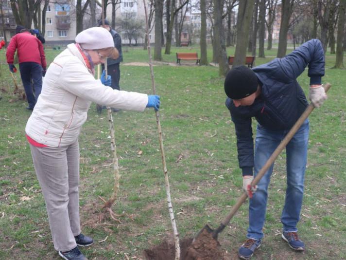 У Володимирі працівники мерії вийшли на весняну толоку