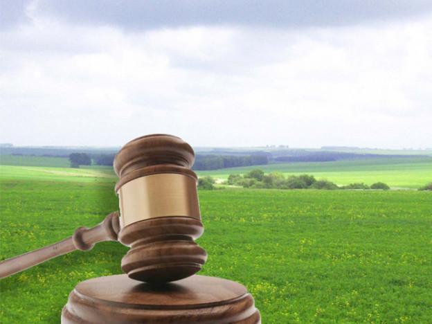 Жителям Володимирщини розповіли, як захистити права власності на землю