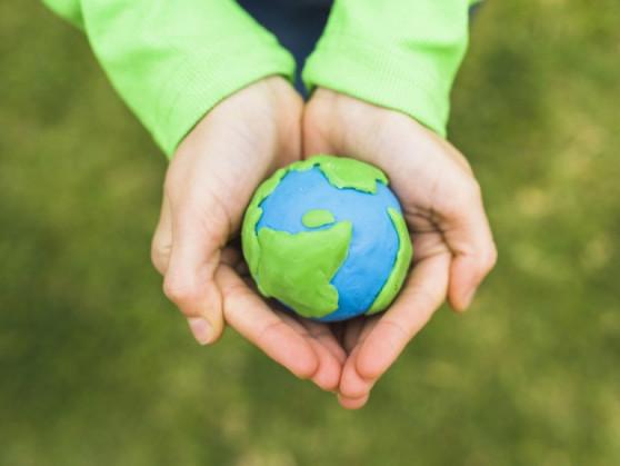 Волинських школярів закликають долучитися до«Zero Waste School»