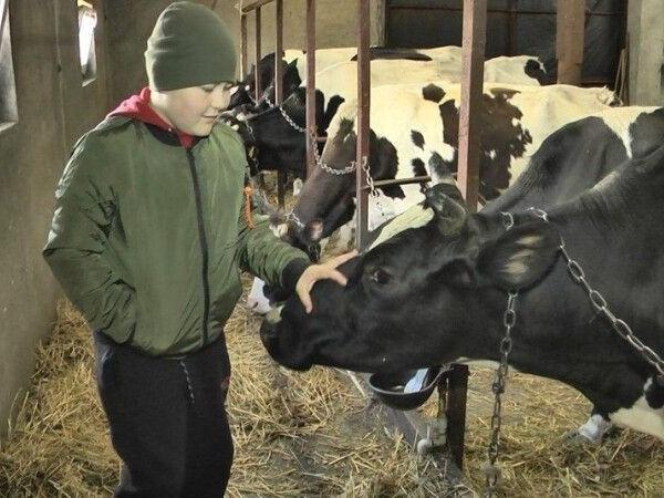 На сімейній фермі