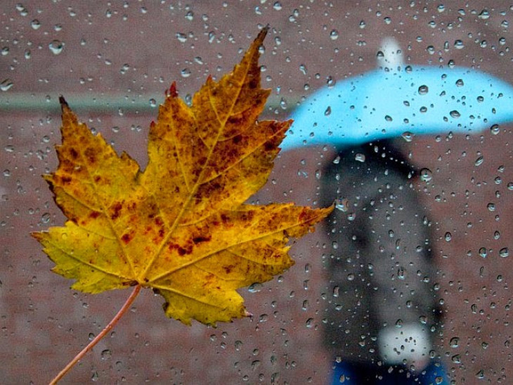 Синоптики попереджають про осіннє похолодання
