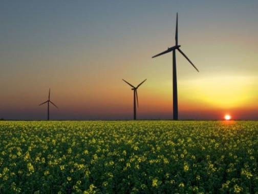 На Волині зацікавлені у зведенні сонячних та вітрових електростанцій.