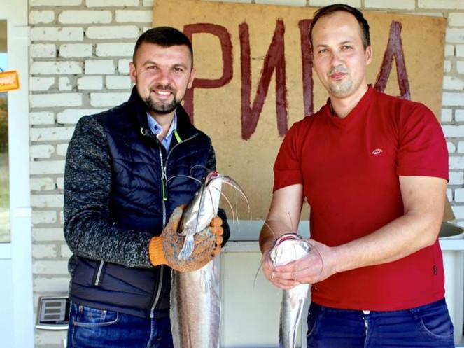 Народний депутат прорекламував «вусату продукцію» волинської акваферми «Фішково»