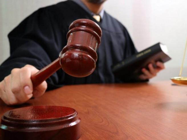 На Волині судили чоловіка, який незаконно зрізав 15 дерев