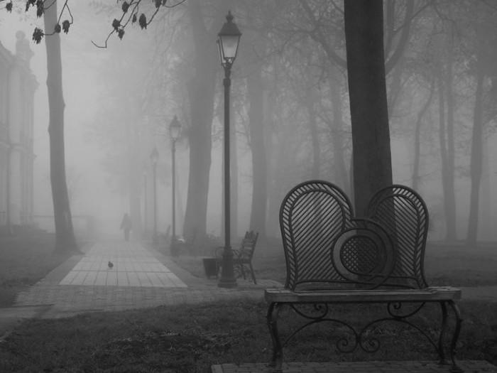 Оприлюднили світлини туманного міста на Волині