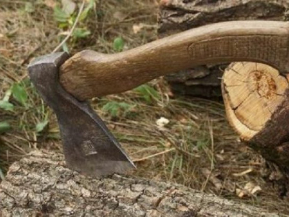 На Волині під час заготівлі дров загинув чоловік