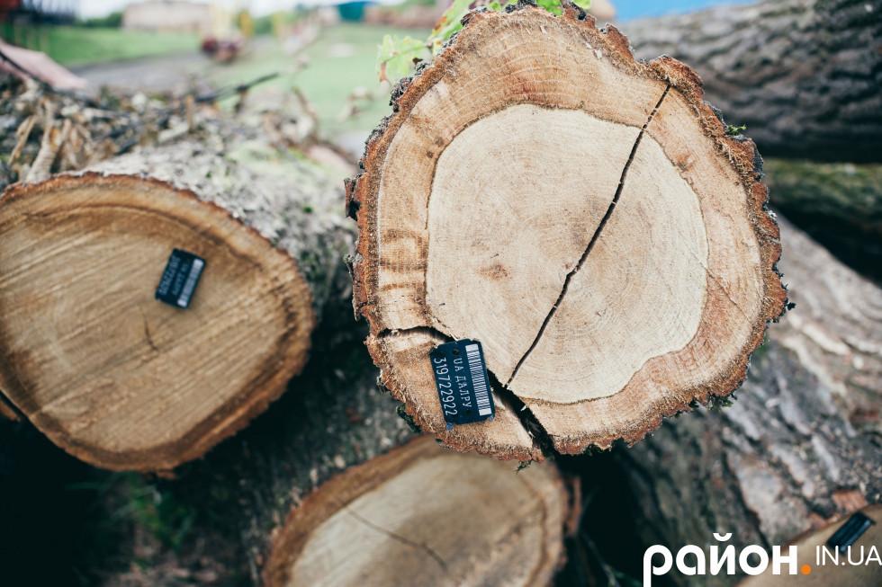 Бірки на деревині